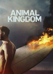 Animal Kingdom S3, E11 - Jackpot