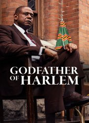 Godfather of Harlem S1, E6 - Il Canto de Malavita