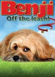 Watch Benji: Off the Leash!