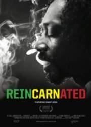 Watch Reincarnated