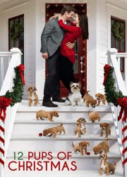 Watch 12 Pups of Christmas