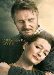 Watch Ordinary Love