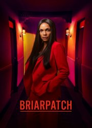 Watch Briarpatch